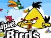 Angry Birds couple birds 2.4